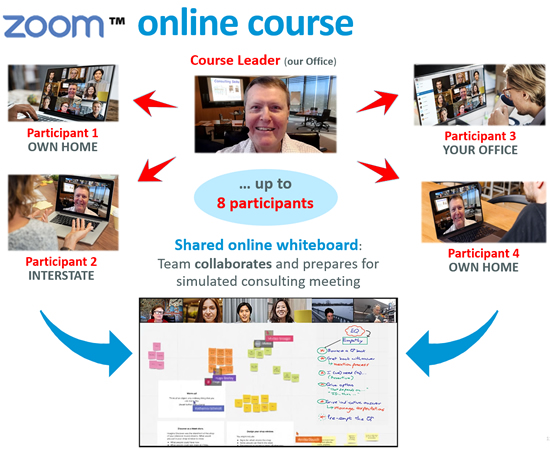 how online zoom course works